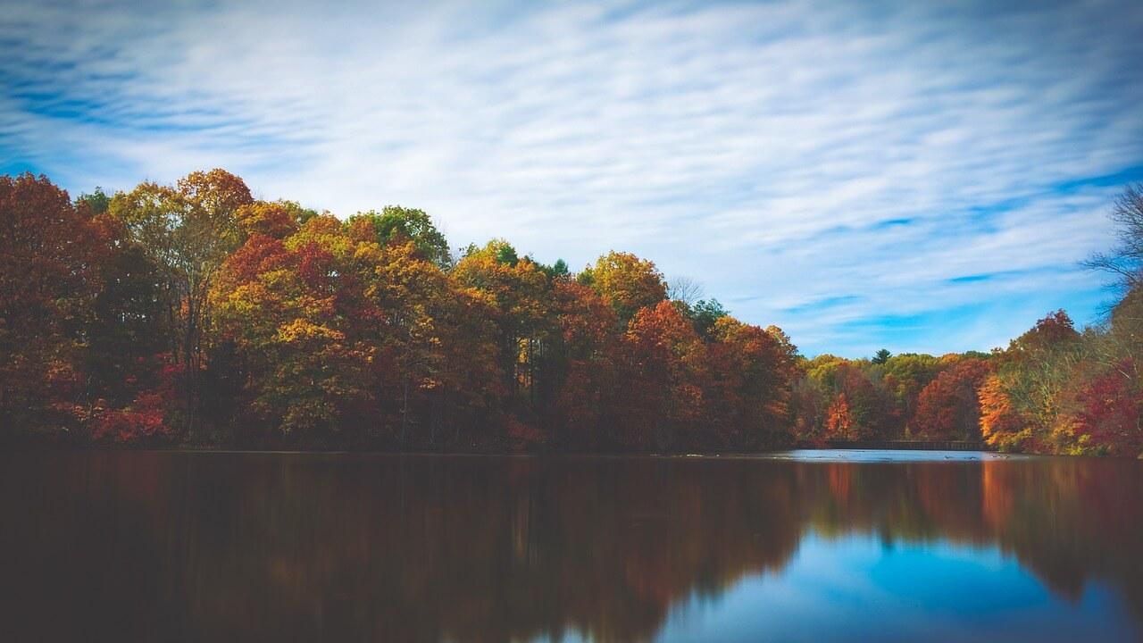 heures dorées pour un paysage d'automne