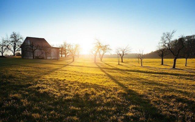 photo de campagne tôt le matin