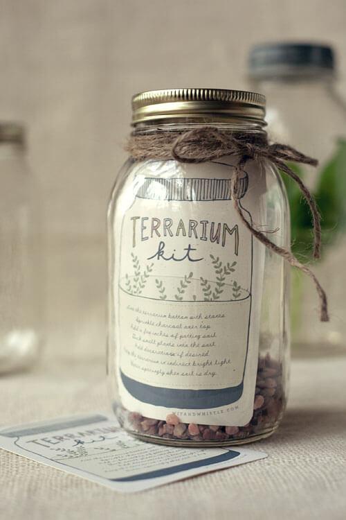 terrarium à faire soi-même