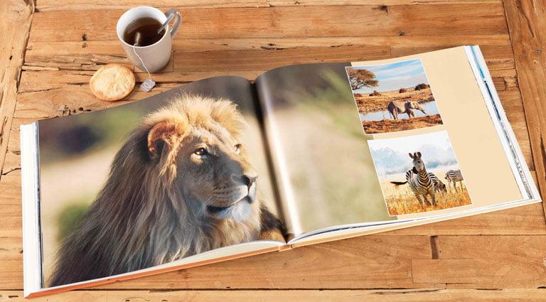 album photo sur l'Afrique au format A4 panorama