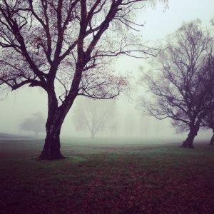 temps couvert en automne